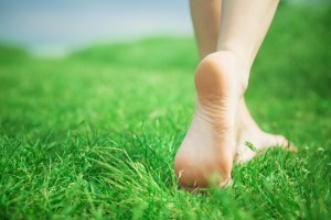 Woman legs walking on green grass